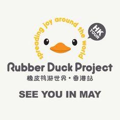 #rubberduck #pato #duckling #오리