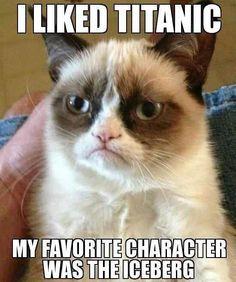 Top 30 Funny Cat Memes #Funny Cats #Memes