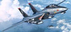 F-14D Super Tomcat (Egbert Friedl)