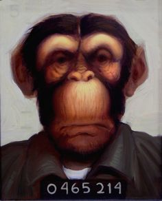 Mug Shot is an original oil painting by Richard Lithgow portraying a chimpanzee in a prison suit in jail.