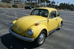 vw bugs | Saturn Yellow 1972 Volkswagen Beetle - Paint Cross Reference