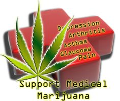 Medical Marijuana Facts   Scary to think what could happen to those who use marijuana for medicinal purposes, simply because they live in a state in which it is not legal.
