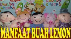 MANFAAT BUAH LEMON ll Finger Family Education