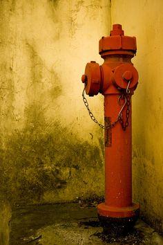 Old hydrant at university.  At #IUAV #Treviso .