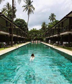 Daydreams of Asia IG: juliajetsetting Travel blogger visiting Koh Samui Thailand  // swim bikini trip spring break pad Thai travel blog holiday summer vacation swimming pool infinity pool landscape photography amazing