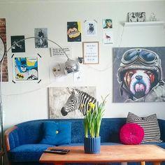 blue sofa #oddagata