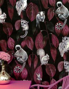 Siberia Dark Wallpaper - The Mint List