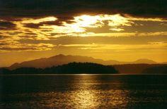 Canada. British Columbia. Vancouver Island, BC 8.10.98