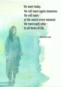 We meet each other in all forms of life. (Thich Nhat Hanh)