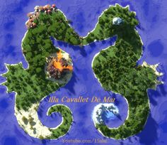Seahorse Isle - Creation Maps - Minecraft Maps