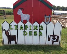 Why You And Your Kids Should Visit A Farm Beautiful Architecture, Canada Travel, Camping Hacks, Ontario, Deer, Tourism, Oxford, Ads, Seasons