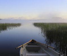 Harjoitukset | Suomen Mielenterveysseura Insomnia, Social Skills, Teamwork, Mindfulness, Relax, Yoga, Mountains, Health, Travel