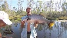 Fishing for Barramundi with Live Bait - REEL ACTION TV - YouTube