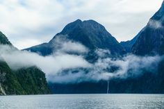Milford Sound - New Zealand (byPhilip N Young) Amazing Photography, Travel Photography, Lilac Sky, Milford Sound, Chicago Travel, Look At The Sky, Island Nations, Beautiful Sky, Beautiful Pictures