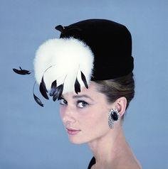 Audrey Hepburn/kalid paola