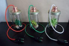 Terrarium, Cactus, Headphones, Electronics, Felt Fabric, Bricolage, Terrariums, Headpieces, Ear Phones