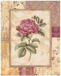 цветы,обои...от chariji. Комментарии