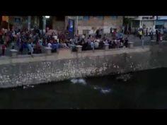 للتاريخ .. مؤيدو الرئيس مرسي يلقون بأنفسهم في النيل هرباً من جحيم البلطج...