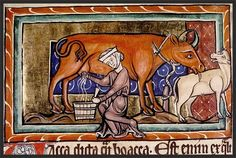 """""""Dairying was recognized as a craft and involved passing on skills and 'mysteries' associated with it from mother to daughter."""" Myrdal, J., (2008). """"Women and Cows – Ownership and Work in Medieval Sweden"""". Ethnologia Scandinavica, Vol. 38, p.61- 80."""