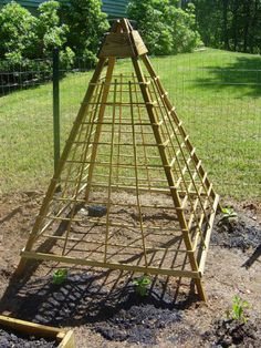 vegetable trellis