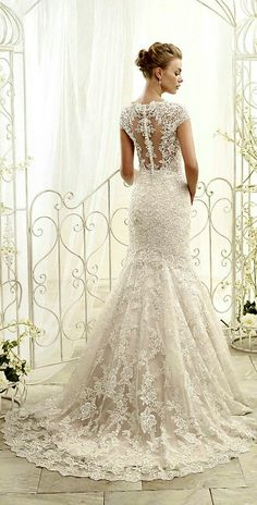 ADK by Eddy K. 2014 ~~ Lace Trumpet Silhouette Wedding Dress Featuring Lace Capped Sleeves, Court Length Train (Back View)
