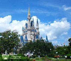 Which Month Should We Go to Disney World?