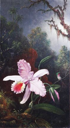 Martin Johnson Heade Orchid with an Amethyst Hummingbird - The Largest Art reproductions Center In Our website. Low Wholesale Prices Great Pricing Quality Hand paintings for saleMartin Johnson Heade Botanical Illustration, Botanical Prints, Martin Johnson Heade, Hummingbird Painting, Francis Picabia, Hudson River School, Rare Orchids, Tropical Art, Arte Floral