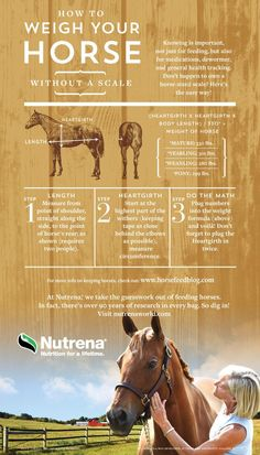Learn how to weigh your horse without a scale.