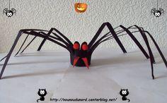 L'araignée réalisée avec un rouleau de sopalin, explications sur mon blog