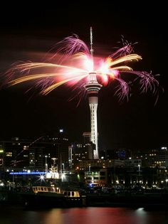 Auckland New Years 2014