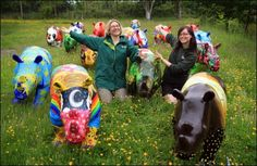 Some of the 96 Go! Rhinos sculptures from the streets of Southampton