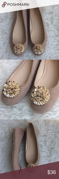 NWOT Talbots Tan Suede Ballet Flats New without tags Talbots tan suede ballet flats. Size 9.5, leather sole. Decorative gold and cream flower on vamp. No trades, offers welcome. Talbots Shoes Flats & Loafers