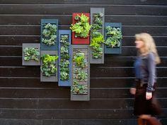GROWER SPOTLIGHT | LILA B. DESIGN