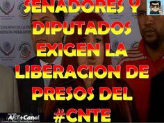 Senadores y Diputados exigen la liberacion de presos del CNTE