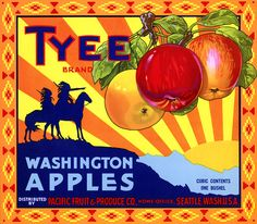 Tyee Apples brand fruit crate label, c. 1940s. 'Tyee Brand Washington Apples. Distributed by Pacific Fruit & Produce Co., Home Office, Seattle, Wash. U.S.A. Cubic Contents One Bushel.'