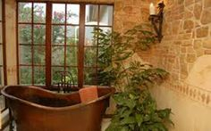 bathrooms with plants and windows