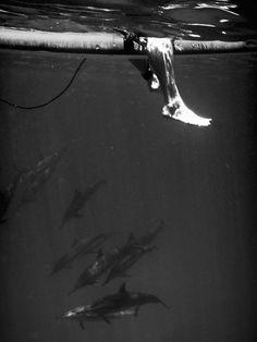 what lies beneath...