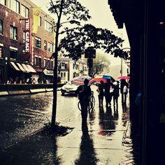 Heavy rain in Harvard Square.