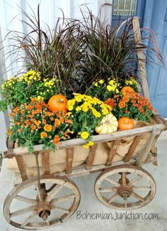 Cheap and easy fall window boxes ideas 12 Garden Cart, Garden Boxes, Garden Ideas, Container Garden, Fall Window Boxes, Fall Containers, Flower Cart, Autumn Decorating, Porch Decorating