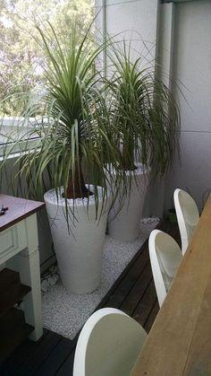 Muitas pessoas se perguntam porque utilizar vasos de padrão liso na decoração da casa ou jardim.  A resposta é simples. Porque os vasos ...