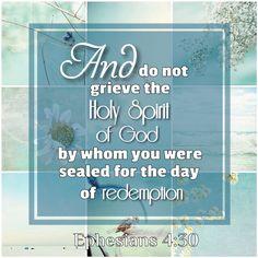 ~ Ephesians 4:30 ~