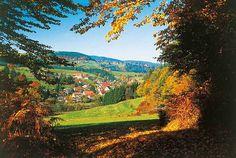 Schwarzwald-Herbstwanderung