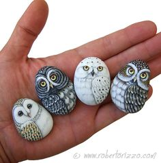 Owl art simple rock painting idea easy rock painting ideas how to make painted rocks painted rocks craft Rock Painting Ideas Easy, Rock Painting Designs, Paint Designs, Paint Ideas, Pebble Painting, Pebble Art, Stone Painting, Diy Painting, Painted Rocks Craft