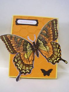 Swallowtail by BrendaRiehle - Cards and Paper Crafts at Splitcoaststampers