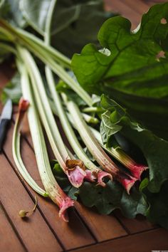 Tarte à la rhubarbe-