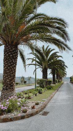 Ferreira Do Zêzere, Sidewalk, Walkway, Walkways