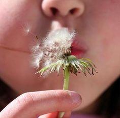 10 cause inaspettate che scatenano le allergie primaverili - Ambiente Bio