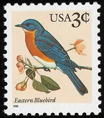 Google Image Result for http://www.stampsbook.org/images/stamps/file/United-stamp6124eastern-bird.jpg