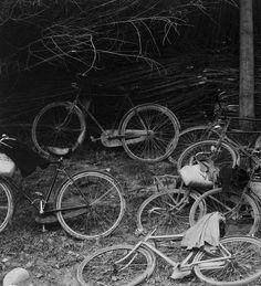 Bicycles, Luzzara, Italy,1953 (Paul Strand)