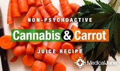 """Learn how to make non-psychoactive cannabis infused carrot juice in this week's cannabis classroom """"cooking with cannabis"""" segment."""